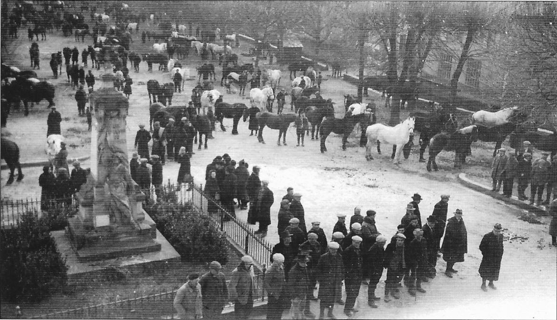 chevaux(2)